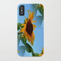 sunflowers iPhone & iPod Cases featuring Sunflowers by Sartoris ART