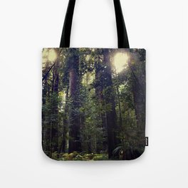 Sunrays in the Redwoods Tote Bag