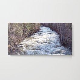 Swollen Creek Runs Wild Metal Print