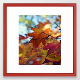 autumn2 Framed Art Print