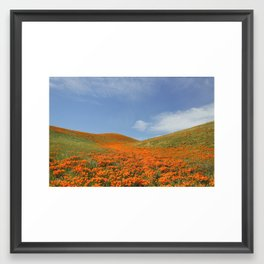 Antelope Valley Poppies Framed Art Print