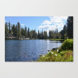 mosquito lake wishes Canvas Print