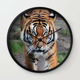 The Bengal Tiger Wall Clock
