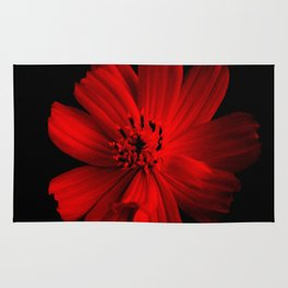 RED - 100418/2 Rug