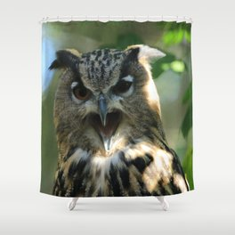 Speech of the owl Shower Curtain