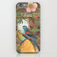 They had constructed their own garden from what they had iPhone 6 Slim Case