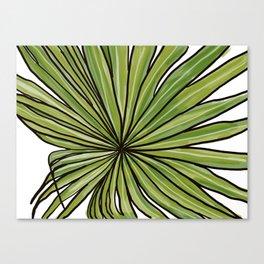Digital Water Color Palm Frond Design Canvas Print