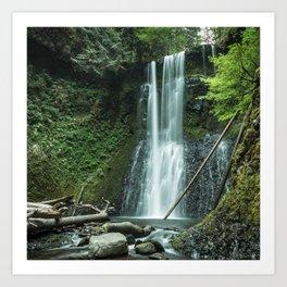 Ecola Falls in Oregon's Columbia River Gorge Art Print