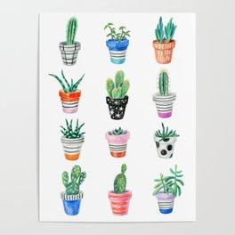 drawing cacti Poster