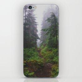 Snoqualmie Pass - Pacific Crest Trail, Washington iPhone Skin