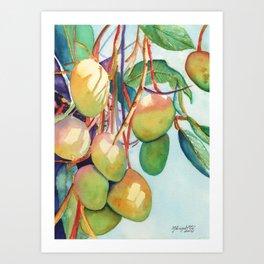 Mangoes Art Print