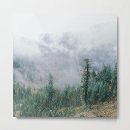 In The Mist Metal Print