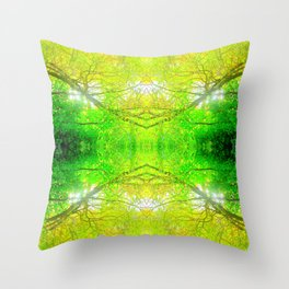 Glory from Above Throw Pillow