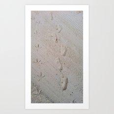 Furry Footprints Art Print
