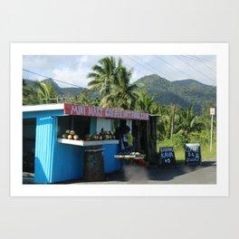 Roadside Stall Fiji Art Print