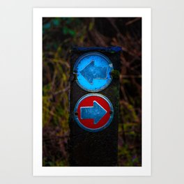 Searching for a way home Art Print