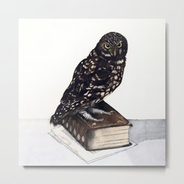Reading with Owl Metal Print