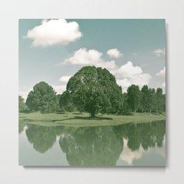 01_Lake Garden#expired#film#effect Metal Print
