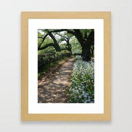 cherry tree, iris ,path Framed Art Print
