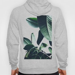 Ficus Elastica #26 #foliage #decor #art #society6 Hoody