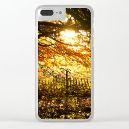 Autumn Leaves Sunset Photo Clear iPhone Case