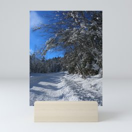 A Trail In The Snow Mini Art Print
