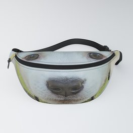 Poppy | Chiot Fanny Pack