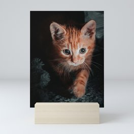Cute orange cat Mini Art Print