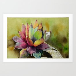 Rainbow Succulent Art Print