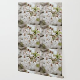 Japanese Cherry Flower Printable Wall Art | Floral Plant Botanical Nature Outdoors Macro Photography Print Wallpaper
