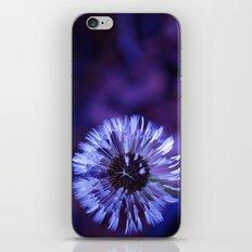 Violet Dandelion iPhone & iPod Skin