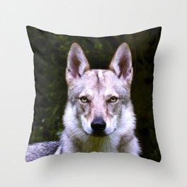 Czech Wolfdog Digit. Edition Throw Pillow