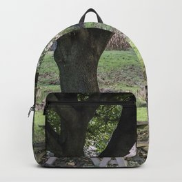 Tire Swing Backpack