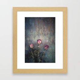Three Dried Roses III Framed Art Print