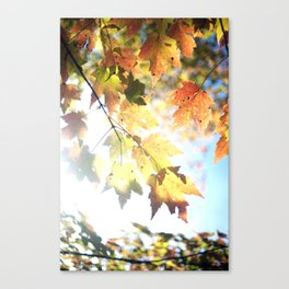 Some Cliches Exist for a Reason Canvas Print