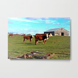 Cow Family Metal Print
