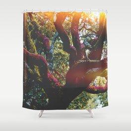 Composición No. 9 Shower Curtain