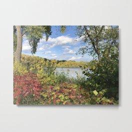 The Beauty of the Autumn Lake Metal Print