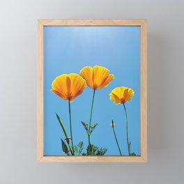 Poppy Daydream Framed Mini Art Print