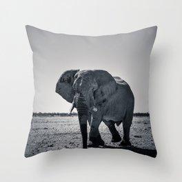 Large Bull Elephant Throw Pillow