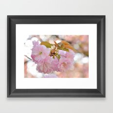 Dreaming of Spring Framed Art Print