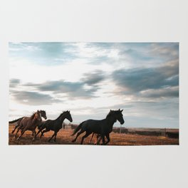 horseplay  Rug