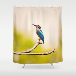 Kingfisher on the Branch Shower Curtain
