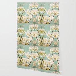 Magnolia Spring Flowers Wallpaper