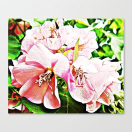 ISLAND FLOWER PAINTINGS TOGETHER AS A GROUP Canvas Print