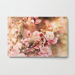 Promise of spring Metal Print