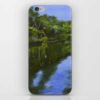 turkey iPhone & iPod Skins featuring Turkey Creek by Roger Wedegis