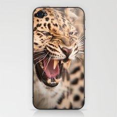 Amur Leopard iPhone & iPod Skin