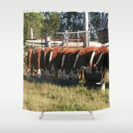 All Lined Up. Shower Curtain