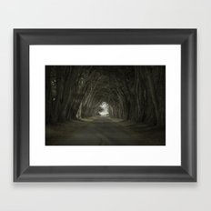 Magic in the Trees Framed Art Print
